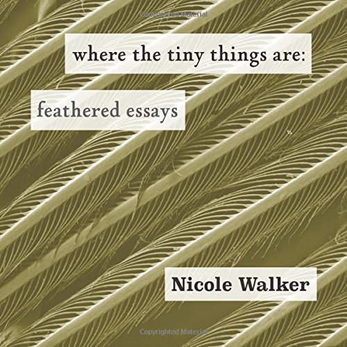 where the tiny things are cover